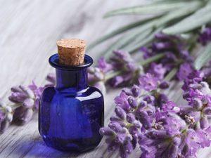 douleurs des règles huiles essentielles pierre lerude toulouse saint jean douleurs-des-regles-menstruelles-synergie-efficace-dhuiles-essentielles